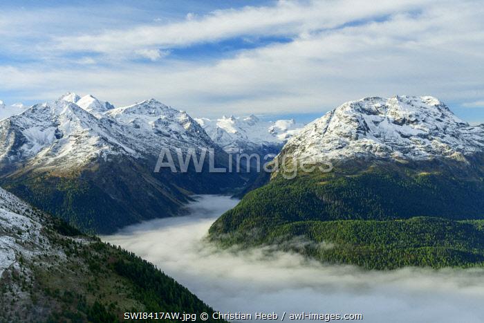 Switzerland, Swiss Alps, Graubuenden, Engadine, Val Roseg seen from Muottas Muragl