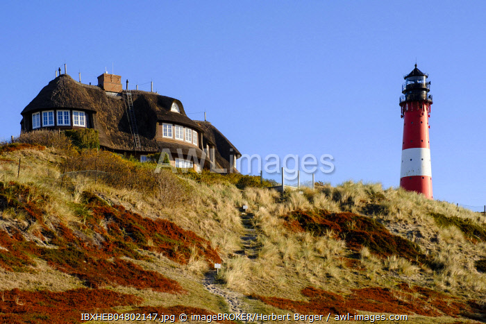 Typical Frisian house with thatched roof and lighthouse in the dunes of Hornum, Sylt, Nordfriesland, Schleswig-Holstein, Germany, Europe