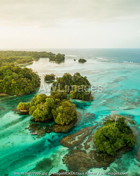 Wooded coastal area with mangroves, drone shot, Escudo de Veraguas, Panama, Central America