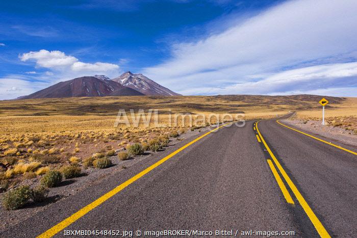 Road through the Atacama Desert, lined with yellow Peruvian feathergrass (Jarava ichu), visible behind volcanoes, Ruta 23, San Pedro de Atacama, El Loa Province, Antofagasta Region, Norte Grande de Chile, Chile, South America