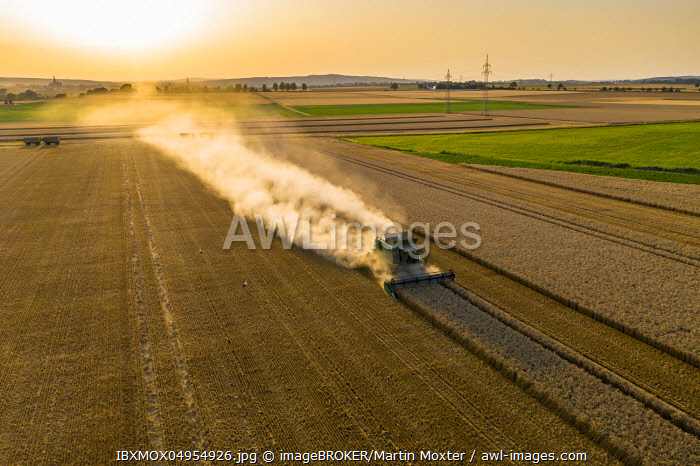 Aerial view, combine harvester, driving in the evening sun over a dry field with a lot of dust, Wetterau, Hesse, Germany, Europe