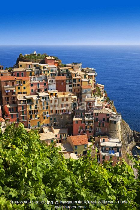 Townscape of Manarola, Cinque Terre, Liguria, Italy, Europe