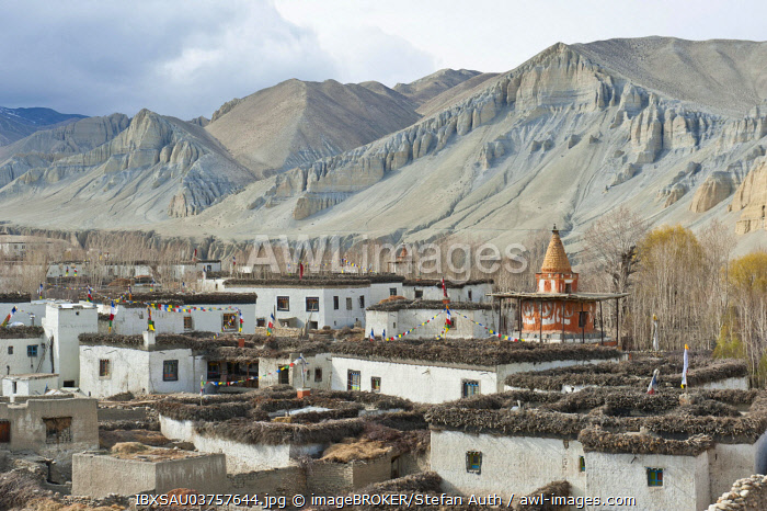 Tibetan architecture, houses with flat roofs, erosion in the mountains, typical stupa in the village Charang, Upper Mustang, Nepal, Asia