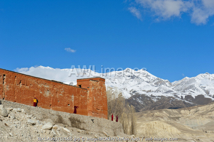 Red wall of a building with monks, Chode Gompa monastery, snow-capped mountains of Mustang Himal mountain range at back, Lo Manthang, Upper Mustang, Lo, Nepal, Asia