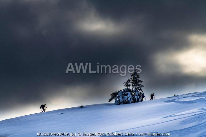 Two ski tourers climbing in backlight, dark clouds, Balderschwang, Oberallgaeu, Bavaria, Germany, Europe