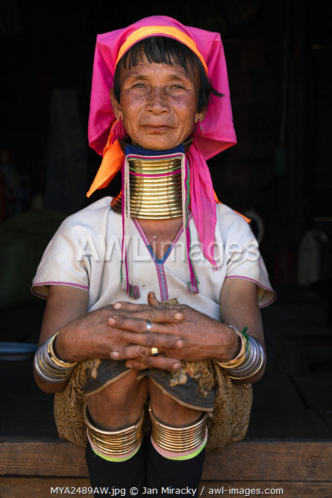awl-images.com - Myanmar / Woman from Kayan tribe wearing traditional brass neck rings, near Loikaw District, Kayah State, Myanmar