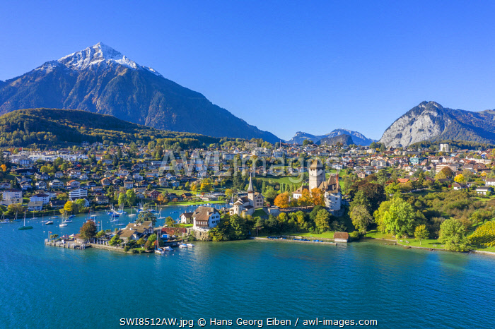 awl-images.com - Switzerland / Aerial view on Spiez and Lake Thun, Berner Oberland, Switzerland
