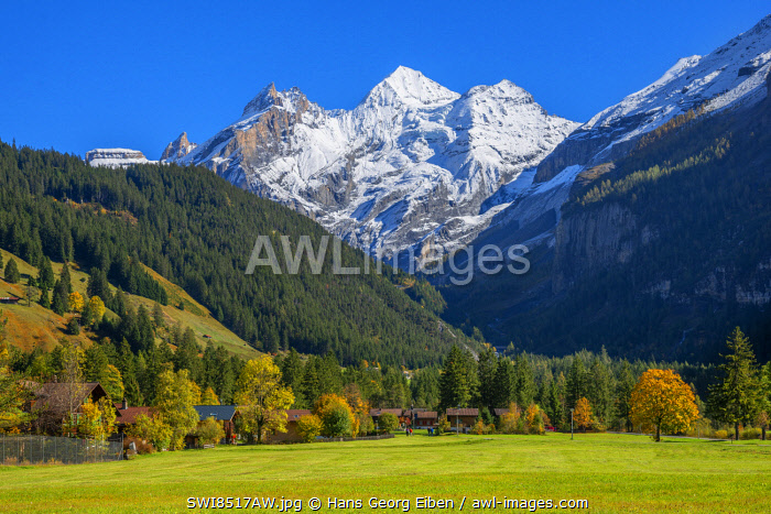 awl-images.com - Switzerland / View from Kandersteg to the Blumlisalp mountain range, Berner Oberland, Switzerland