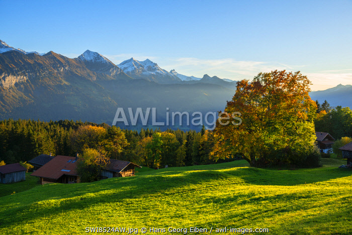 awl-images.com - Switzerland / View from Beatenberg on the Bernese Alps, Berner Oberland, Switzerland