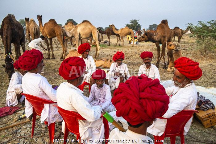 India, Rajasthan, Jhalrapatan, Chandrabhaga mela, livestock fair and cultural events