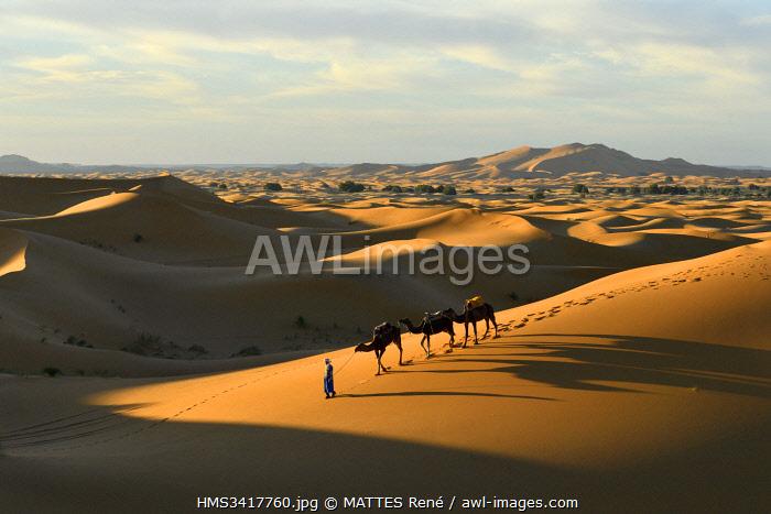 Morocco, Tafilalet region, Merzouga, erg Chebbi dunes