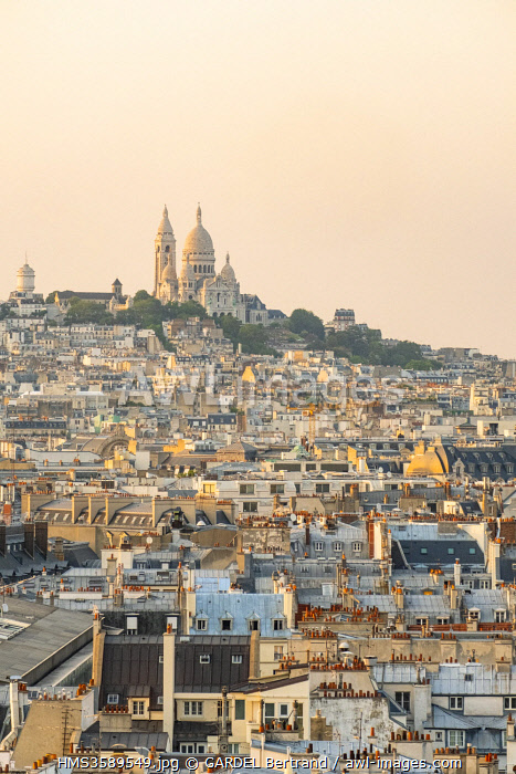 France, Paris, the rooftops of Paris in Zinc and the Sacred Heart