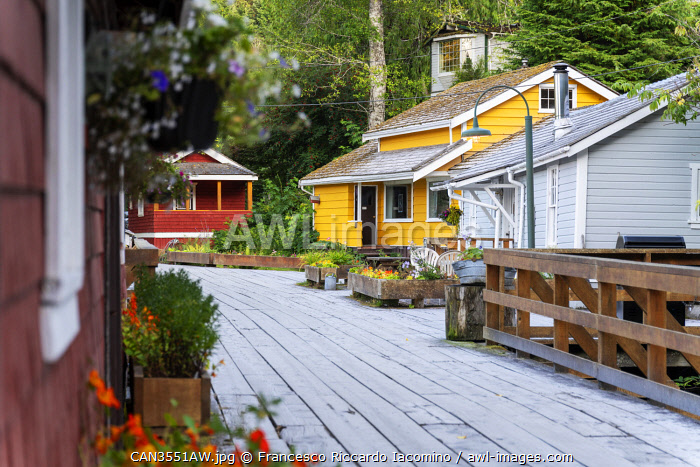awl-images.com - Canada / Telegraph Cove village and colorful houses, Vancouver Island. British Columbia, Canada
