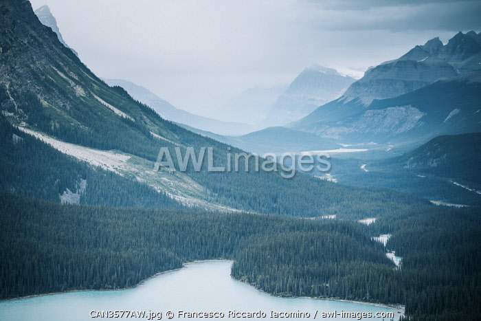 awl-images.com - Canada / Peyto Lake, Icefields Parkway, Canadian Rockies, Canada