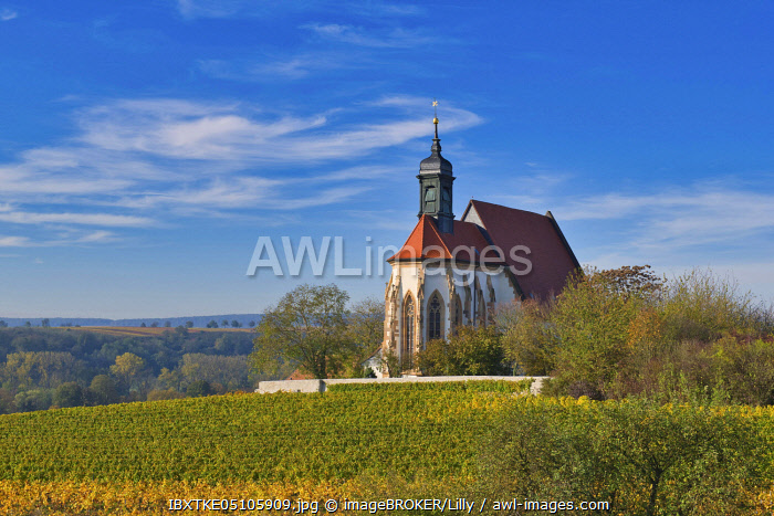 awl-images.com - Germany / Pilgrimage Church of Maria im Weingarten, Volkach, Mainfranken, Lower Franconia, Franconia, Bavaria, Germany, Europe