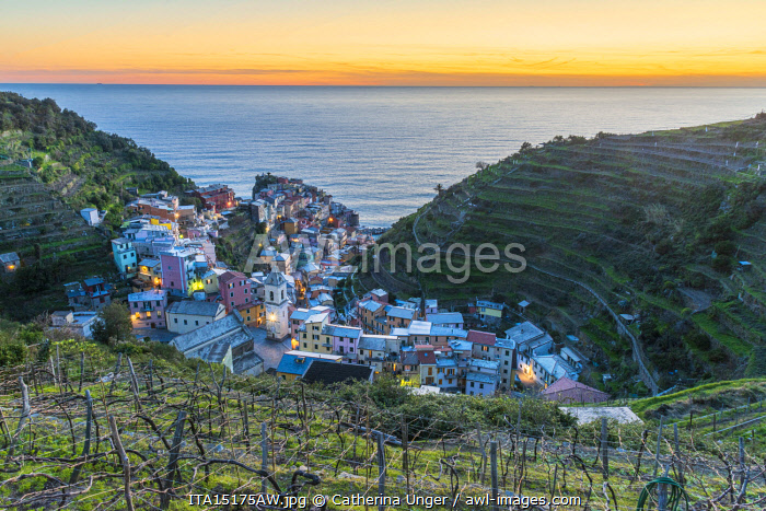 awl-images.com - Italy / Europe, Italy, Liguria. View over the Cinque Terre village Manarola at sunset