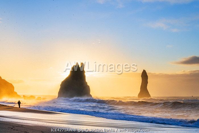 Man walking past the Sea Stacks at Reynisfjara black sand beach, Vik, Iceland, Europe