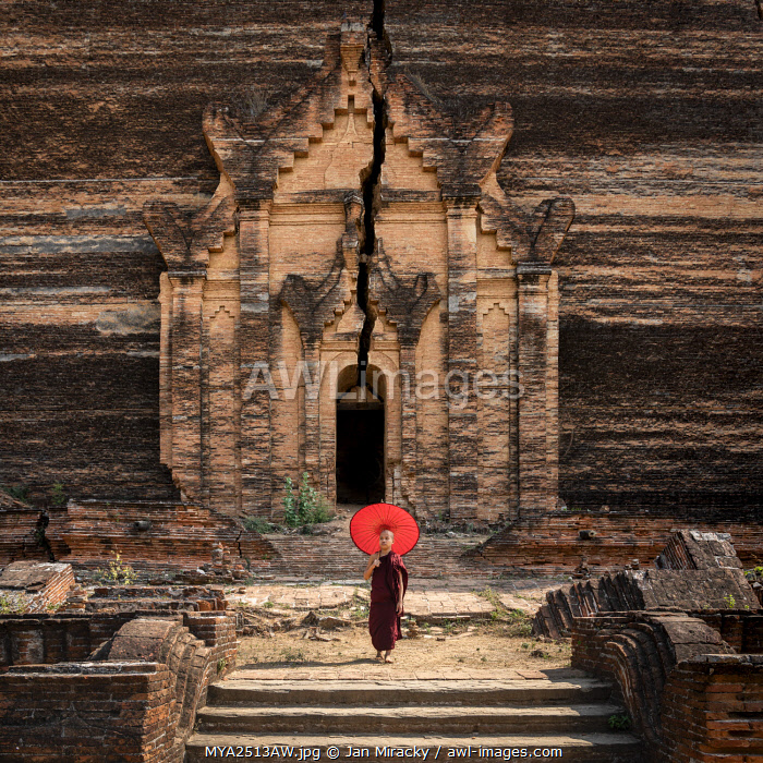 Novice monk standing in front of the unfinished Pahtodawgyi pagoda known for a crack caused by a earthquake in 1839, Mingun, Mandalay, Sagaing Township, Sagaing District, Sagaing Region, Myanmar