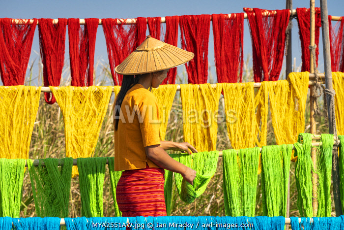 awl-images.com - Myanmar / Woman hanging dyed yarn from a boat to dry in a traditional weaving village on Lake Inle, Nyaungshwe Township, Taunggyi District, Shan State, Myanmar