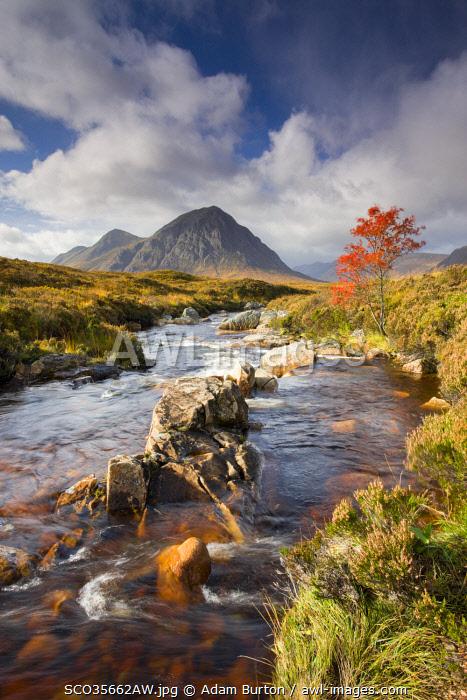 A stream runs through an autumnal Rannoch Moor towards Buachaille Etive Mor, Highlands, Scotland