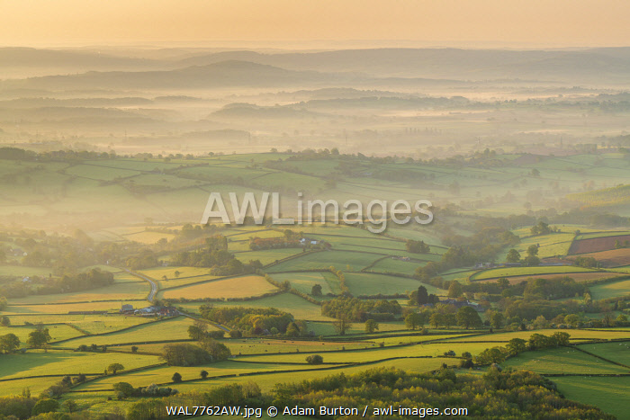 Rolling countryside at dawn, Brecon Beacons National Park, Powys, Wales, UK