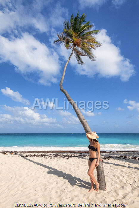 Woman with hat have relax under the palm tree, Bottom Bay, Barbados Island, Lesser Antilles, West Indies
