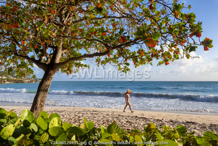 Woman with hat walks on waterfront of Miami Beach, Barbados Island, Lesser Antilles, West Indies
