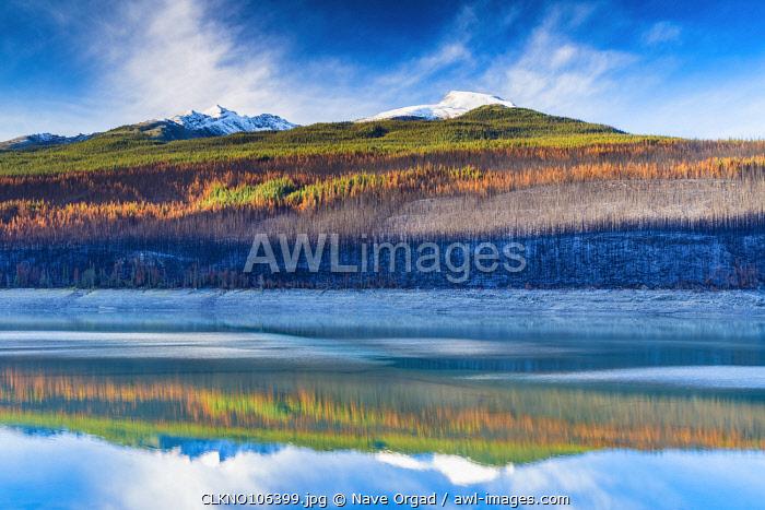 Autumn colors near Medicine Lake, Jasper National Park, Alberta, Canada