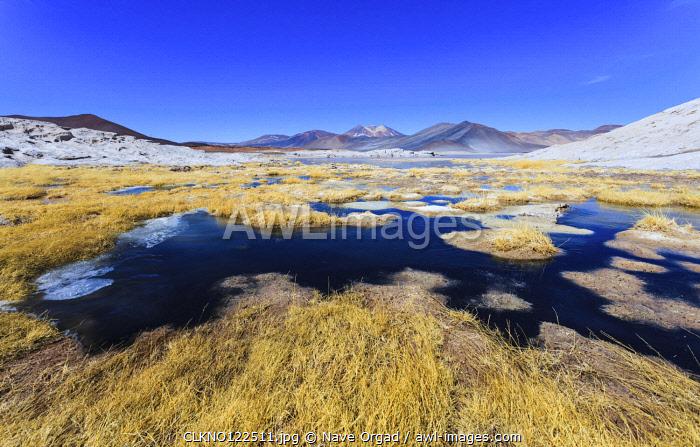 Altiplanic Lagoons (Lagunas Altiplanicas), Reserva Nacional de Los Flamencos, Salar de Atacama,  Antofagasta, Chile