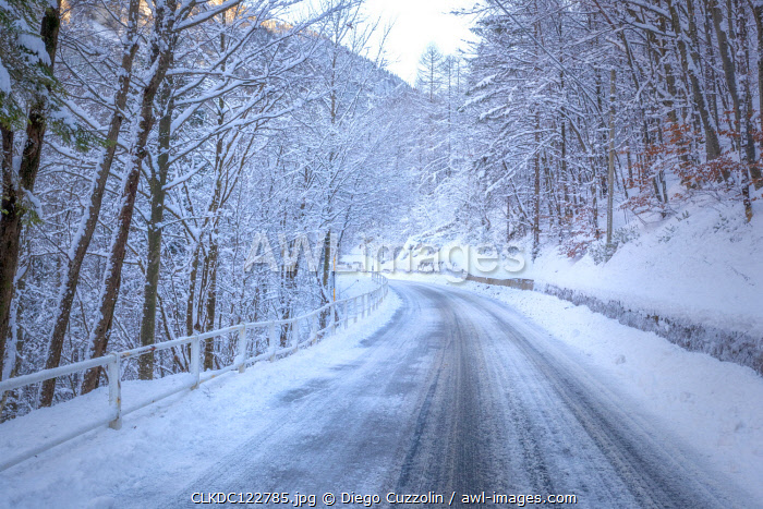 The road of Raccolana Valley after a snowfall, Julian Alps, Chiusaforte, Udine province, Friuli Venezia Giulia, Italy.