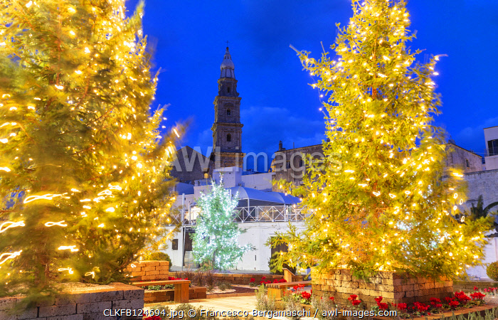 Christmas trees in the old town of Monopoli with view on the tower bell of the cathedral, Apulia, Italy