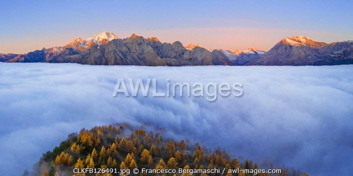 Fog covers the Valmalenco(Val Malenco) with the mountain range of Disgrazia illuminated by sunrise in the background. Valtellina, Lombardy, Italy