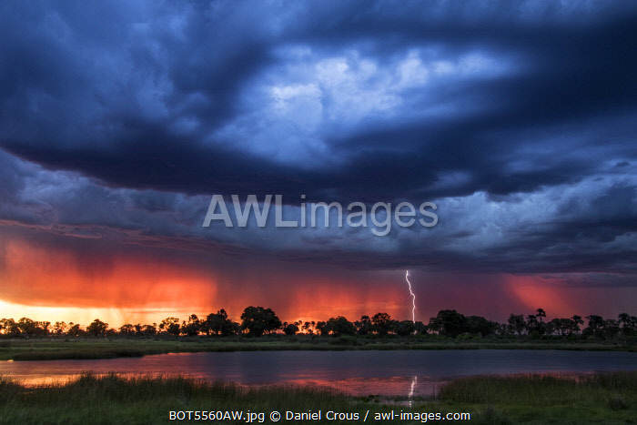 Lightning shoots from a summer thunderstorm as the sun sets behind it, Okavango Delta, Botswana