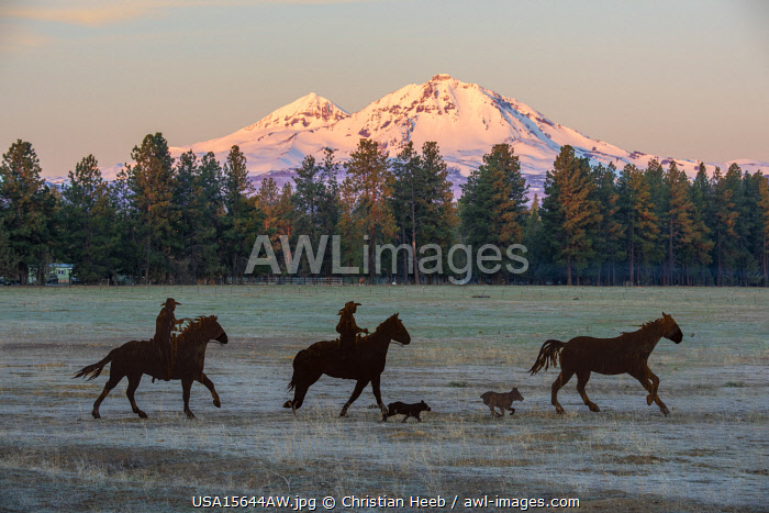 awl-images.com - USA / USA, Oregon, Deschutes County, Central Oregon,Cascade Mountains, Sisters,