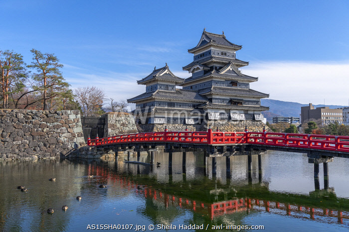 The Matsumoto Castle as seen from the bridge with the city buildings in the background, Japan