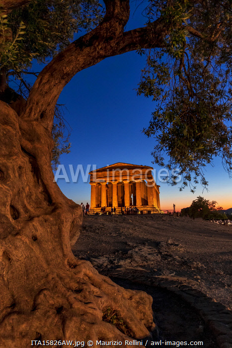 Agrigento, Sicily. People visiting Concordia Temple in the Valley of Temples at dusk