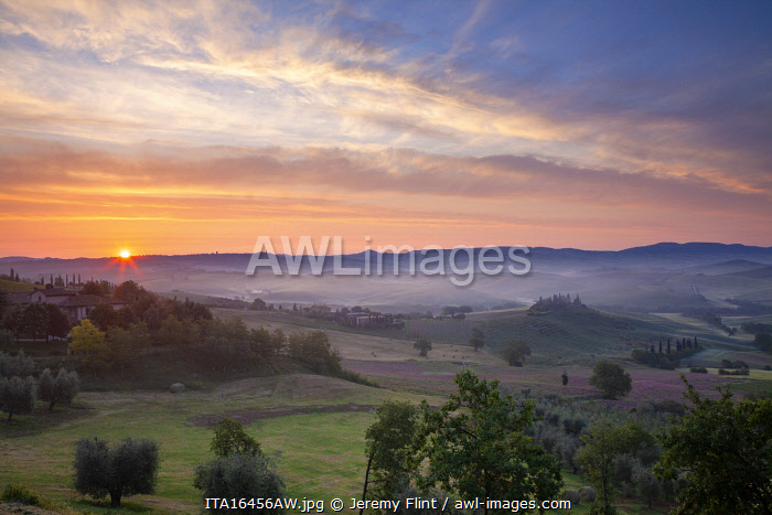 awl-images.com - Italy / Belvedere and countryside at first light, San Quirico d'Orcia, Tuscany, Italy