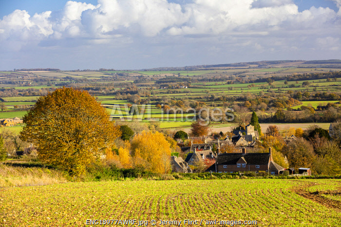 awl-images.com - England / Icombe, the Cotswolds, Gloucestershire, England
