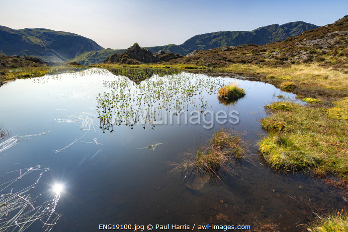 awl-images.com - England / England, Cumbria, Lake District, Buttermere, Inominate Tarn