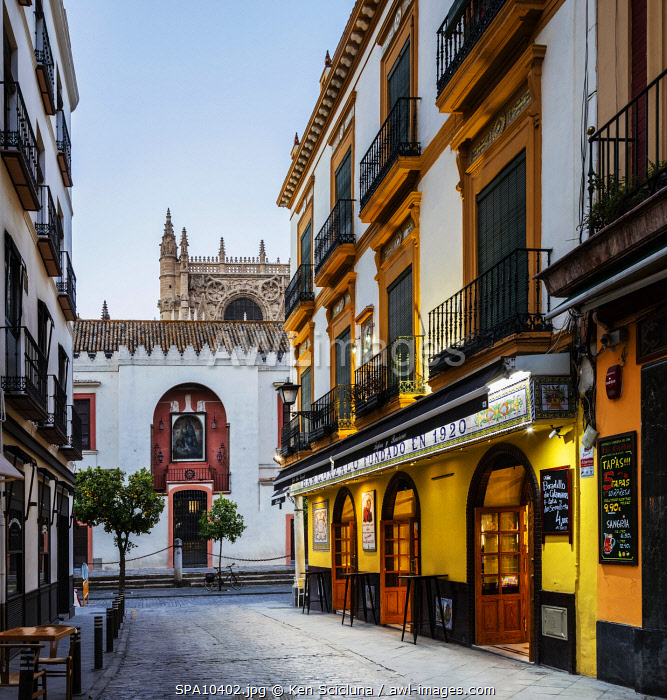 awl-images.com - Spain / Spain. Andalusia. Seville. A traditional Andalusian Bar in the environs of the Giralda or Cathedral of Seville.