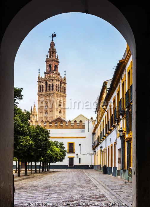 awl-images.com - Spain / Spain. Andalusia. Seville. The Giralda or Seville Cathedral from the Santa Cruz region or Juderia the Jewish quarter of Seville in the Patio de Banderas.