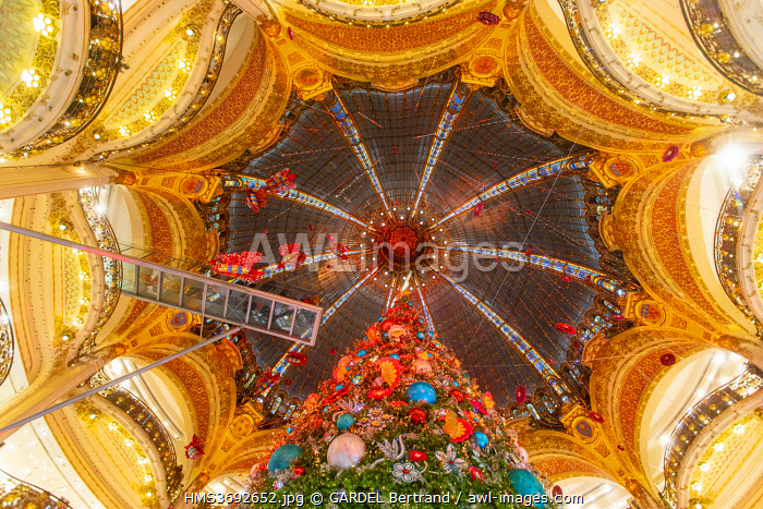 awl-images.com - France / France, Paris, the Galeries Lafayette department store at Christmas, the Christmas tree under the dome