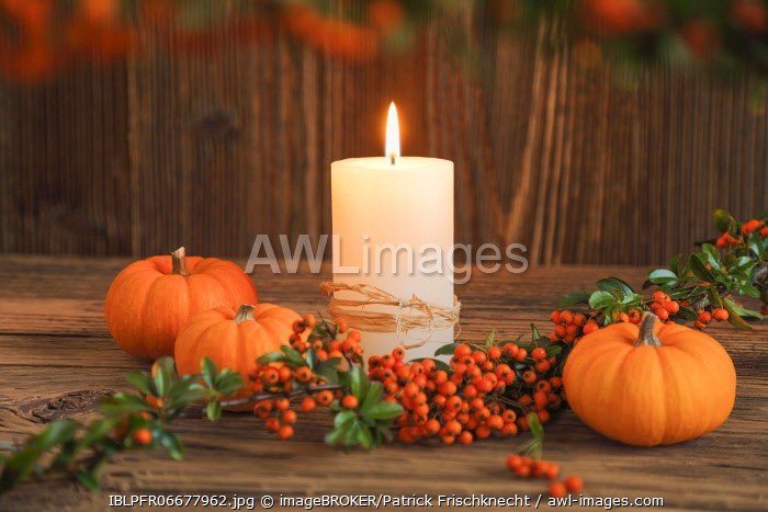 awl-images.com - Switzerland / Autumn decoration, Switzerland, Europe